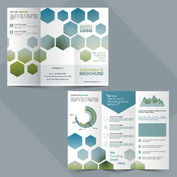 Two Pages, Tri-Fold Corporate Brochure design.