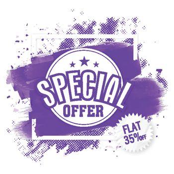 Special Offer Sale Flyer or Banner.