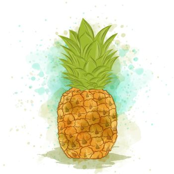 Appetizing watercolor pineapple