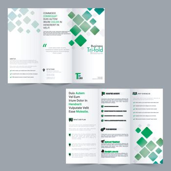 Tri-Fold Brochure design for Business.