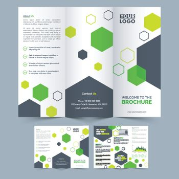 Professional Three Fold Brochure design.