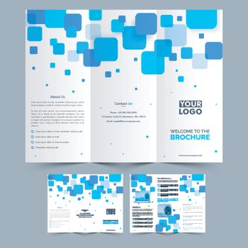Business Tri Fold Brochure design.