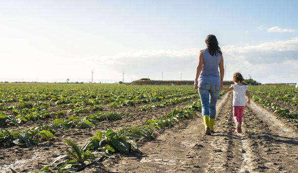 Woman farmer and little girl walking on the agriculture land. Child and mother in plantation. Sun light and shadows.