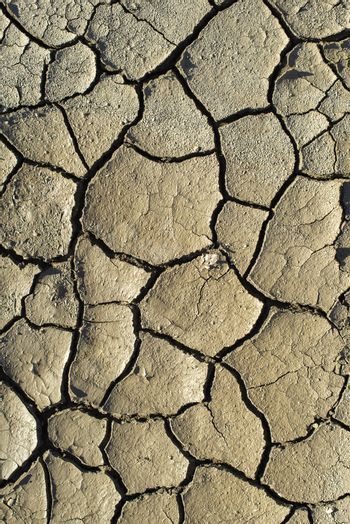 Cracked soil texture. Hard shadows and sun. Dried ground. Pattern of many cracks for background.