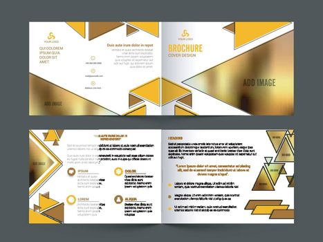 Professional Business Brochure Set with glossy abstract design and Front, Inner or Back Pages Presentation.