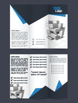Professional Tri-Fold Brochure, Template design.