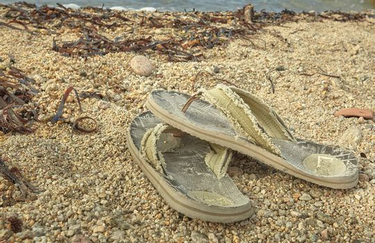 The flip-flops abandoned on the beach.