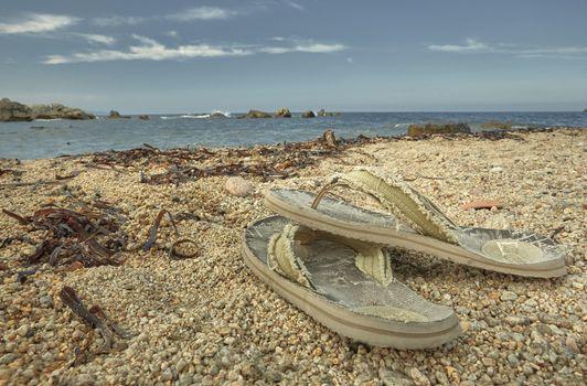 The solitude of a paradisiacal beach
