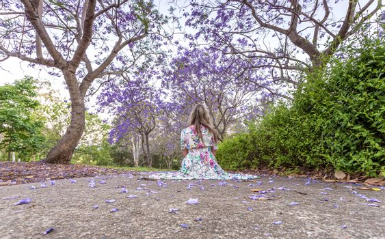 Woman sitting under a canopy of purple flowers