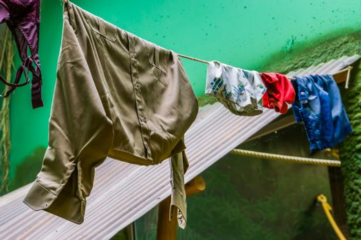 clean laundry hanging to dry on a wash line, natural drying method