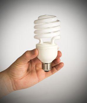 Ecological economical lamp