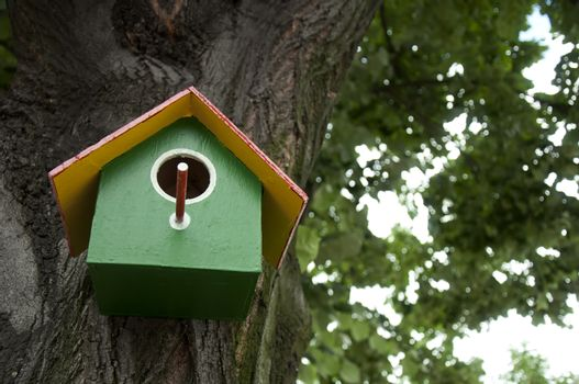 Home-made bright colored bird house. Space for text or other content