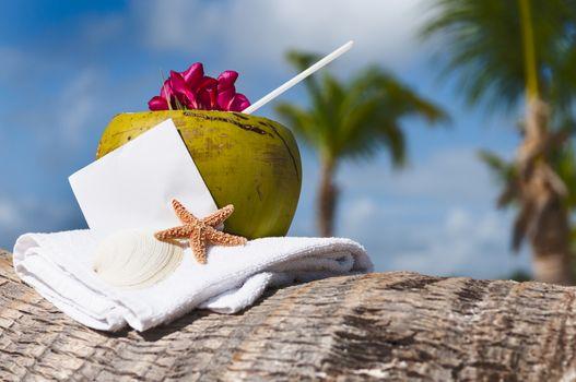 Coconut cocktail starfish tropical Caribbean beach refreshment a