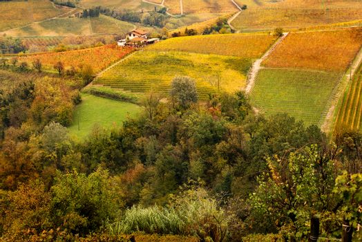 Piedmont countryside in autumn