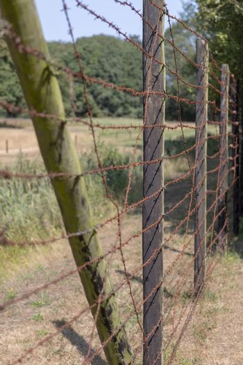 High wooden fence with rusty barbed wire