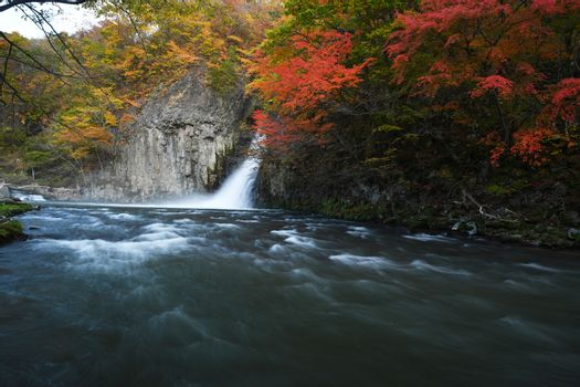 Waterfall stream in Tohoku with Autumn Colors