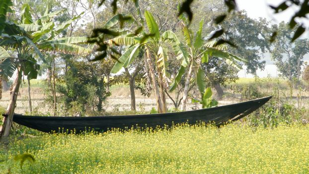 The Old Wooden Canal Boat near saltwater water canal of Ganges river delta in the beautiful mangrove forest of Sundarban West Bengal India South Asia Pac.