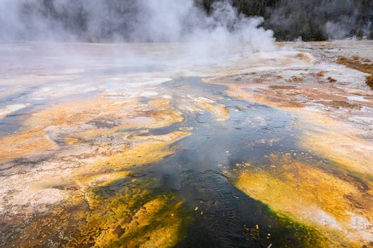 Boiling water from geothermal heat of geyser basin flowing around area making orange and other colors due to level of temperature and kind of bacteria inside.