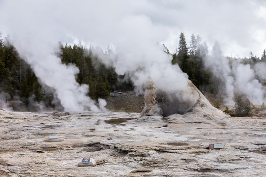 Dangerous area of big cone geyser exploding white steam into the air, Yellowstone National Park, Wyoming, USA.