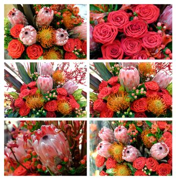 Bouquet roses and protea set. Luxury wedding bouquet with roses and protea. Exotic flower Protea Flowers for Valentine's Day, Mother's Day Bouquets.