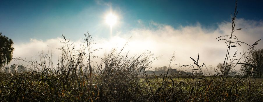 a winter country landscape in the morning