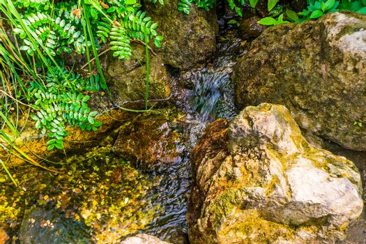 closeup of a small brook streaming over some rocks, nature background
