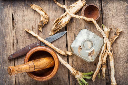 Alcoholic tincture on horseradish
