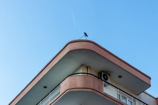 a bottom up architectural shoot to corner of an old building -  there is a crow at roof
