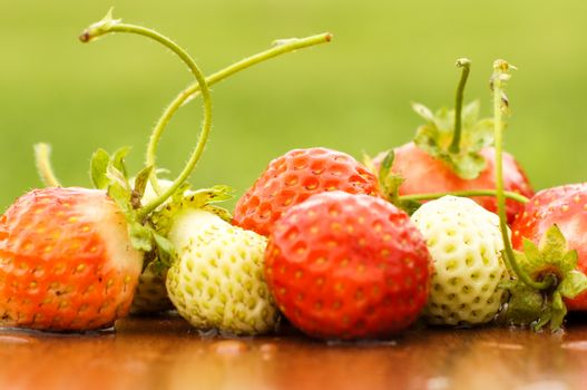 White and red strawberries lie in the sun. Delicious and sweet dessert berry. Vitamins