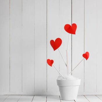 Heart haped flowers in white pot on white wooden background. Growing love. Valentines day concept