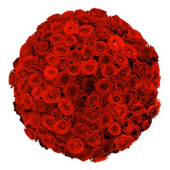 Beautiful many red roses bouquet isolated on white background