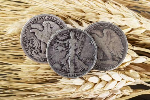 Silver Half Dollars on Wheat Stalk