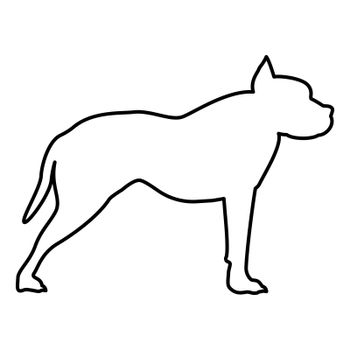 Pit bull terrier icon black color