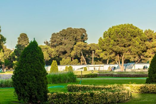a wide landscape shoot from a very nice looking green park. photo has taken at izmir/turkey.