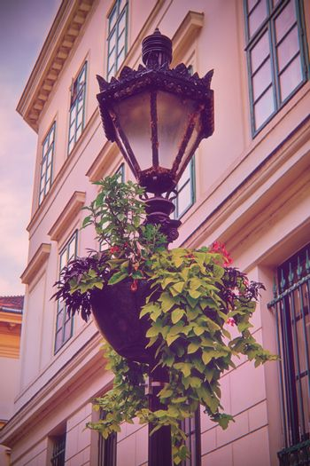 Ornate street lantern with beautiful hanging flower pot in front of an old building. Hanging potted flowers on a street lamp in Budapest. Architecture and street lamp design. Urban streetscape.