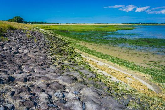 rocky sea landscape