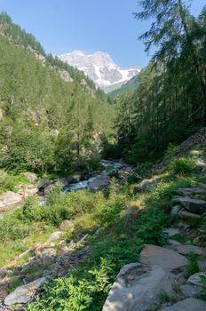 Trekking in Italian Alps mountain