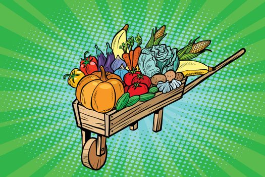 autumn harvest in a wooden farm wheelbarrow