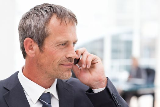 Businessman phoning in his office