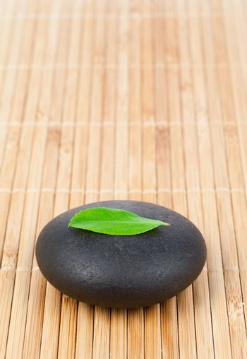 A leaf on a round smooth pebble