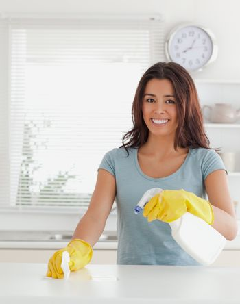 Charming female doing the housework while using a spray