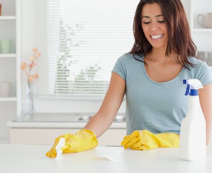 Attractive woman doing the housework