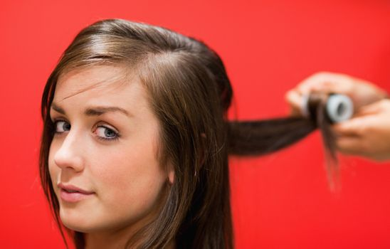 Woman having her hair rolled