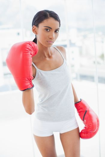 Serious competitive model with boxing gloves threatening camera