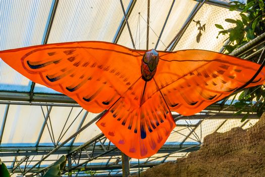 beautiful orange butterfly decoration hanging on the ceiling, creative artworks