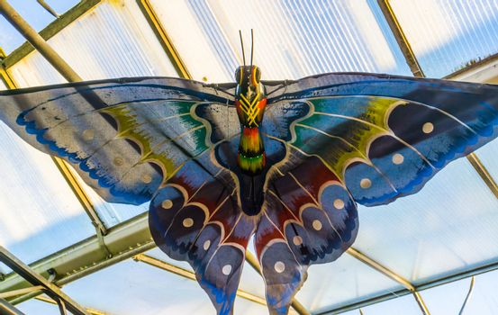Beautiful multicolored butterfly hanging on the ceiling, creative artwork