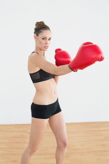 Concentrated fit woman wearing boxing gloves while posing in sports hall looking at camera