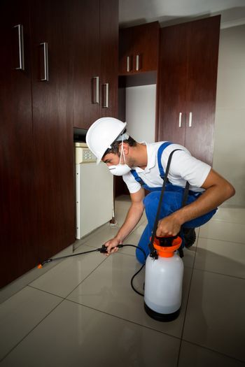 Manual worker spraying insecticide below cabinets