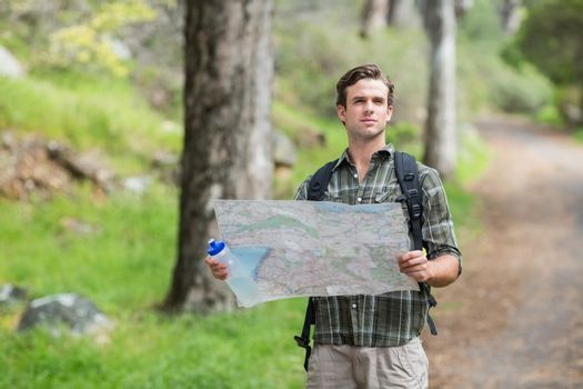Hiker standing with map on footpath in forest