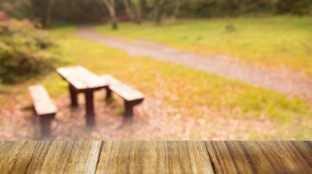 Table overlooking park scene